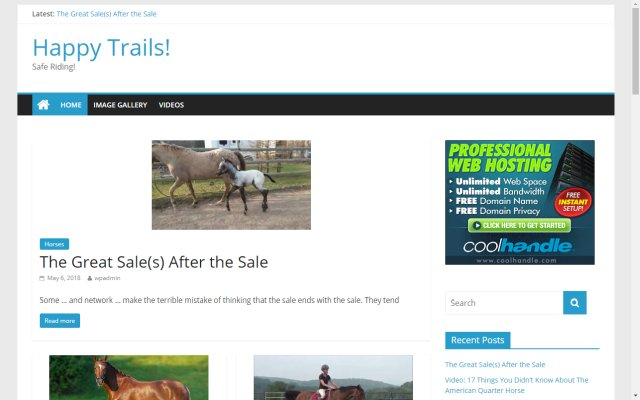 horses4saleinsidenorthtexas.com