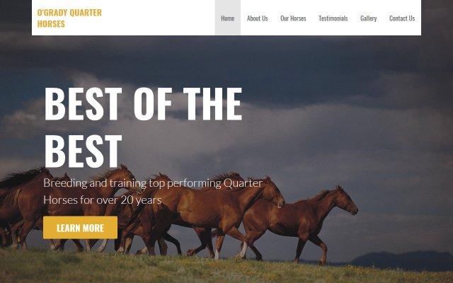 ogradyhorses.com