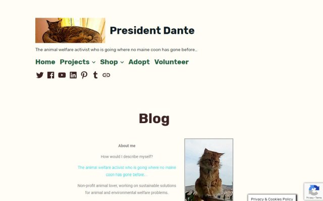 presidentdante.website