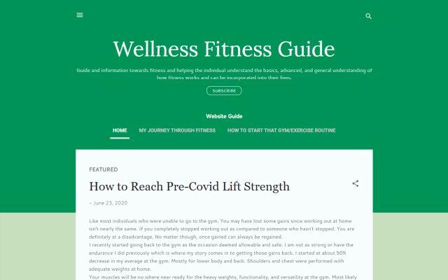 wellnessfitnessguide.com