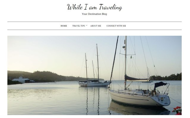whileiamtraveling.com