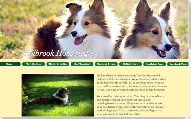 holbrookdogs.com